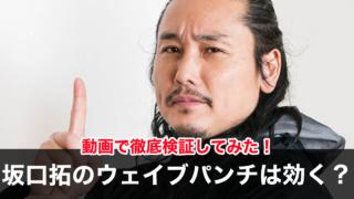 坂口拓のウェイブパンチは効かないは嘘?師匠・稲川義貴の経歴も凄い!