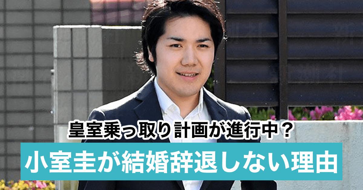 小室圭が結婚を辞退しない理由5つ!録音で秋篠宮家を脅迫?皇室乗っ取り計画が進行中?