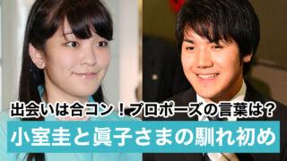 【時系列】小室圭と眞子様の馴れ初めとプロポーズ 出会いは合コン?