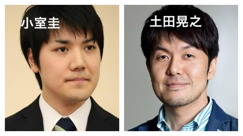 小室圭似てる芸能人 土田晃之
