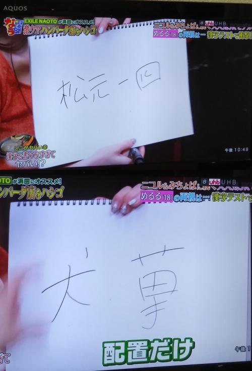 めるるは漢字も書けない?