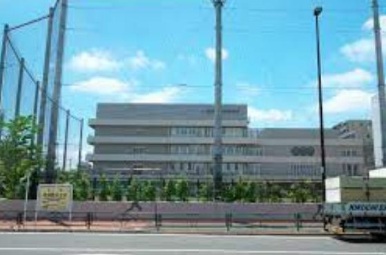 平野美宇は中学で上京し東京都北区立稲付中学校へ