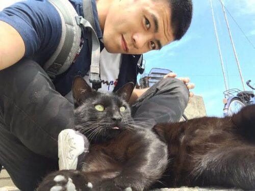 文田健一郎 猫好き 結婚相手 猫屋敷